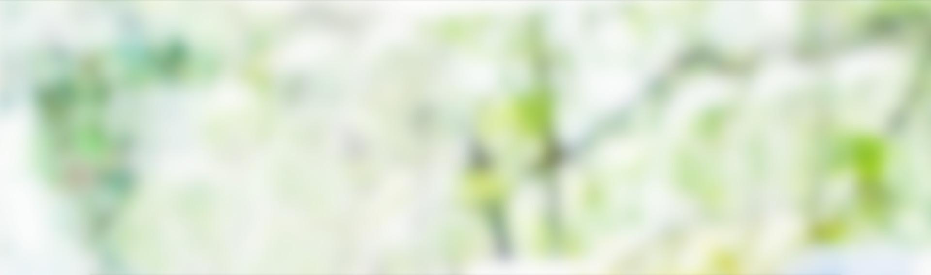 gr_bgr